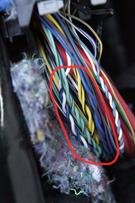 Confirmation of colors for speaker wires speakerwiresg publicscrutiny Gallery